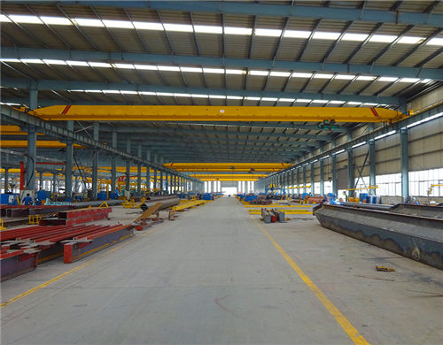 quality ceiling crane for sale