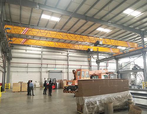 AQ-HD5T overhead crane